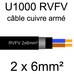 câble électrique armé renforcé âme cuivre U1000 RVFV 2 conducteurs section 6mm²