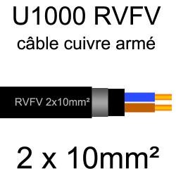câble électrique armé renforcé âme cuivre U1000 RVFV 2 conducteurs section 10mm²