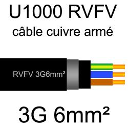 câble électrique armé renforcé âme cuivre U1000 RVFV 3 conducteurs section 6mm²