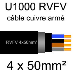 câble électrique armé renforcé âme cuivre U1000 RVFV 4 conducteurs section 50mm² sans terre