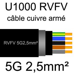 câble électrique armé renforcé âme cuivre U1000 RVFV 5 conducteurs section 2.5mm²