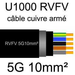 câble électrique armé renforcé âme cuivre U1000 RVFV 5 conducteurs section 10mm²