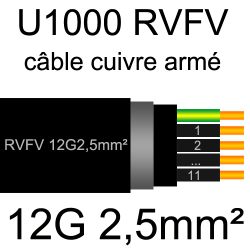 câble électrique armé renforcé âme cuivre U1000 RVFV 12 conducteurs section 2.5mm²