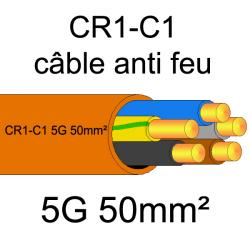 câble électrique résistant au feu CR1-C1 5G50mm²