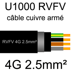câble électrique armé renforcé âme cuivre U1000 RVFV 4 conducteurs section 2.5mm²