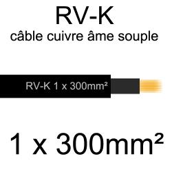câble électrique âme cuivre souple série RV-K 1 conducteur 300mm²