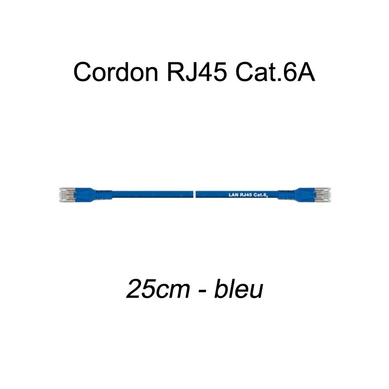 Câble Ethernet RJ45 cat 6a 25cm bleu