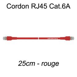 Câble Ethernet RJ45 cat 6a 25cm rouge