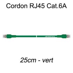 Câble Ethernet RJ45 cat 6a 25cm vert