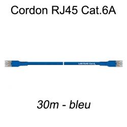 Câble Ethernet RJ45 cat 6a 30m bleu