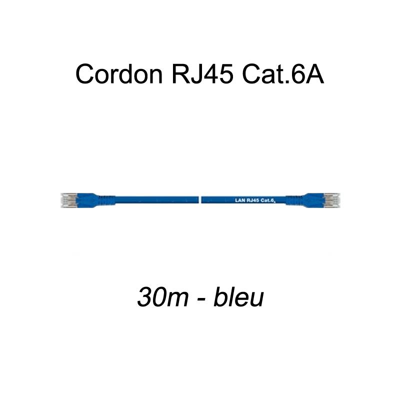 Cordon Ethernet RJ45 Cat.6A