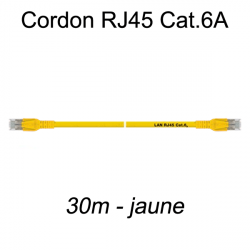 Câble Ethernet RJ45 cat 6a 30m jaune