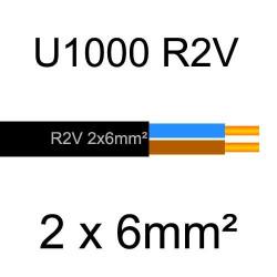 câble électrique cuivre U1000 R2V 2 conducteurs de section 6mm²